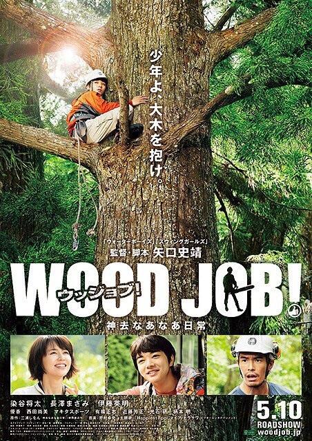 転職するなら林業!